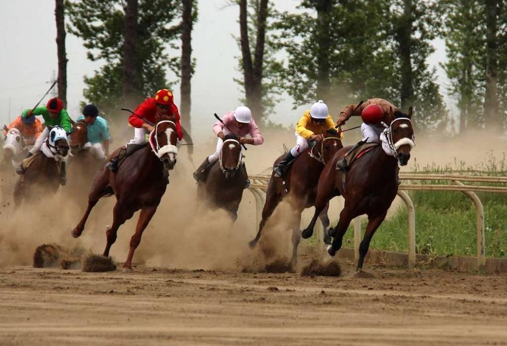 کورس بهاره گنبد برگزار شد، مسابقات اسب سواری