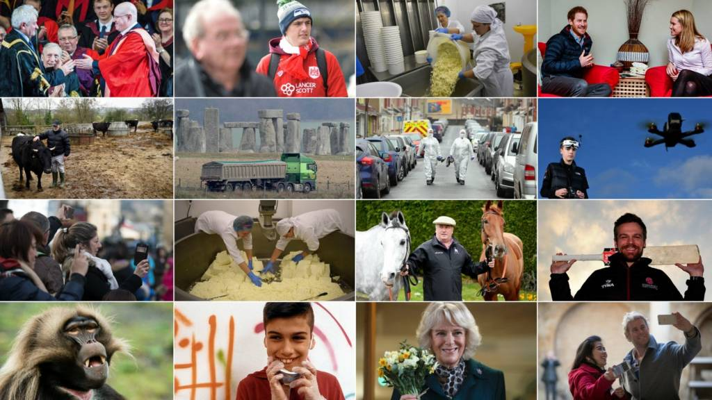 A montage of images from the West Country