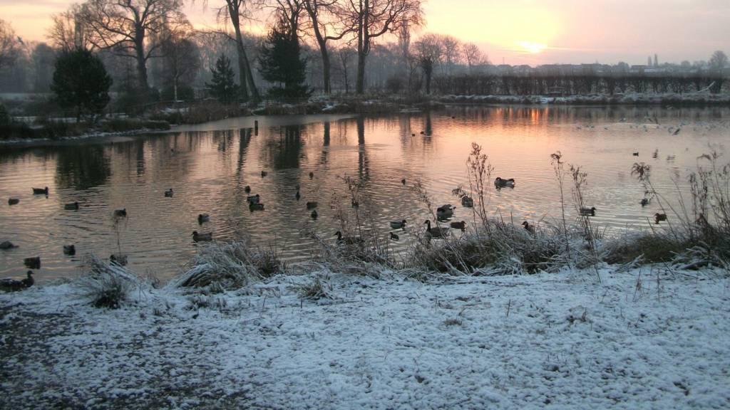 Cusworth Park, Doncaster