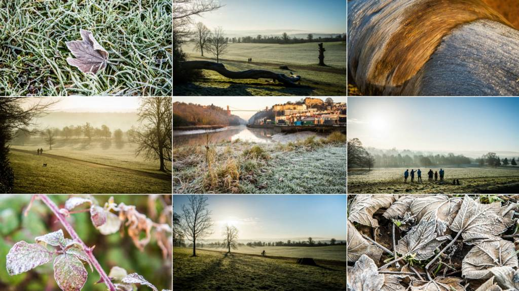 A montage of wintry images from the West Country