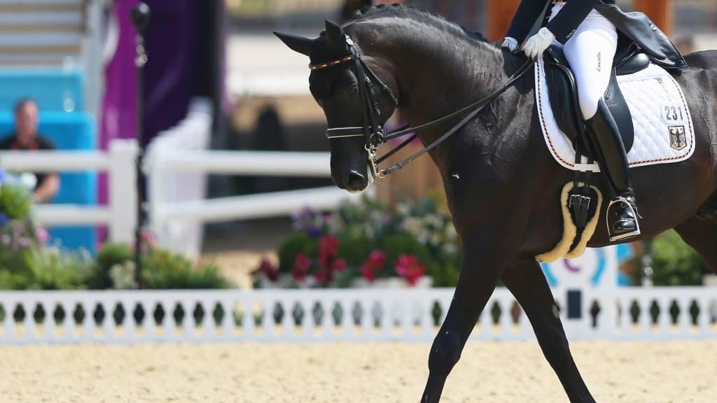 Equestrian Gb S Dujardin In Dressage Grand Prix Freestyle