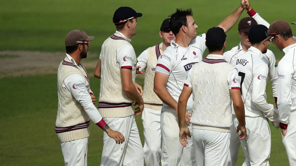 Somerset wicket celebration