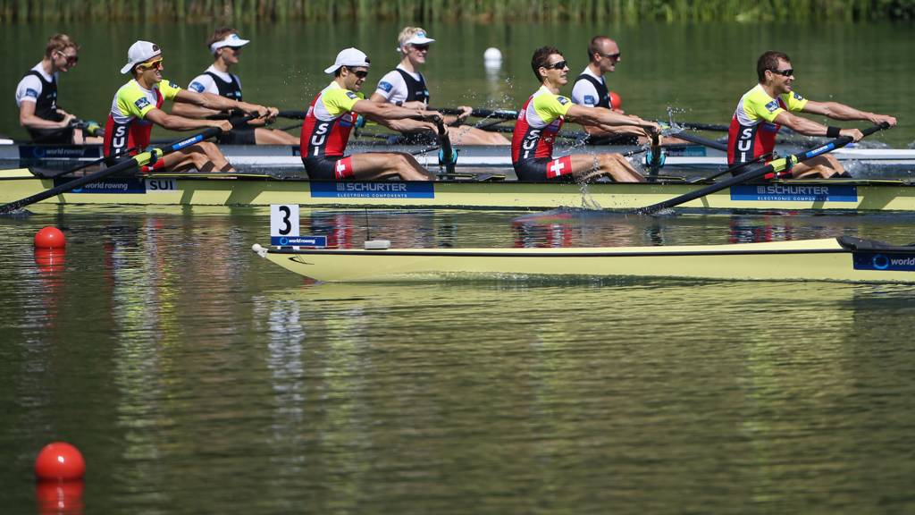 Rowers in action at the Rowing World Cup