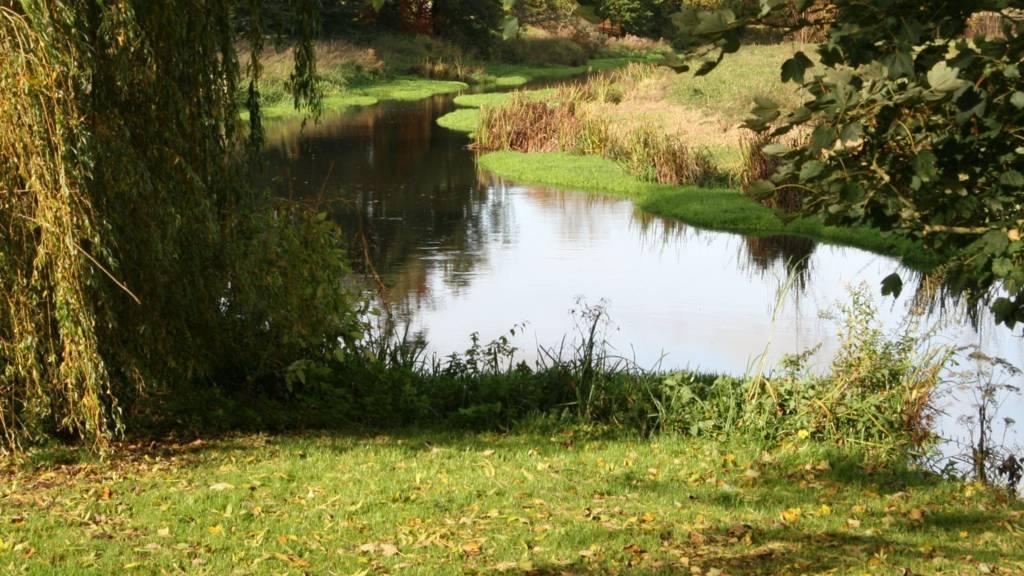 Attingham stream