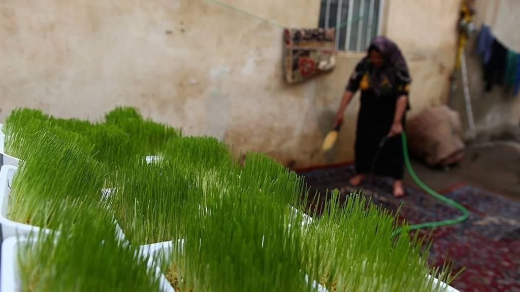 روزهای آخر سال و تدارک برای سال نو در ایران