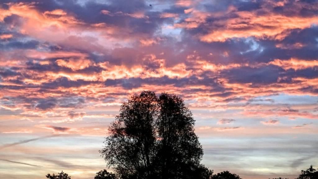 Sunrise over Bradeley Fields