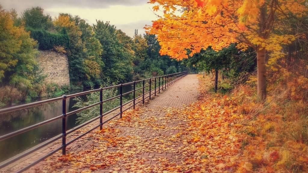 Five Weirs Walk Sheffield