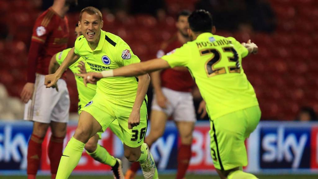 Steve Sidwell scores winner for Brighton