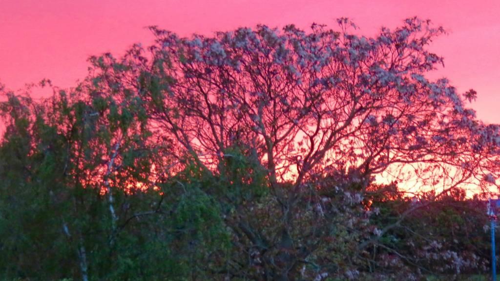 Sunset Cambridge
