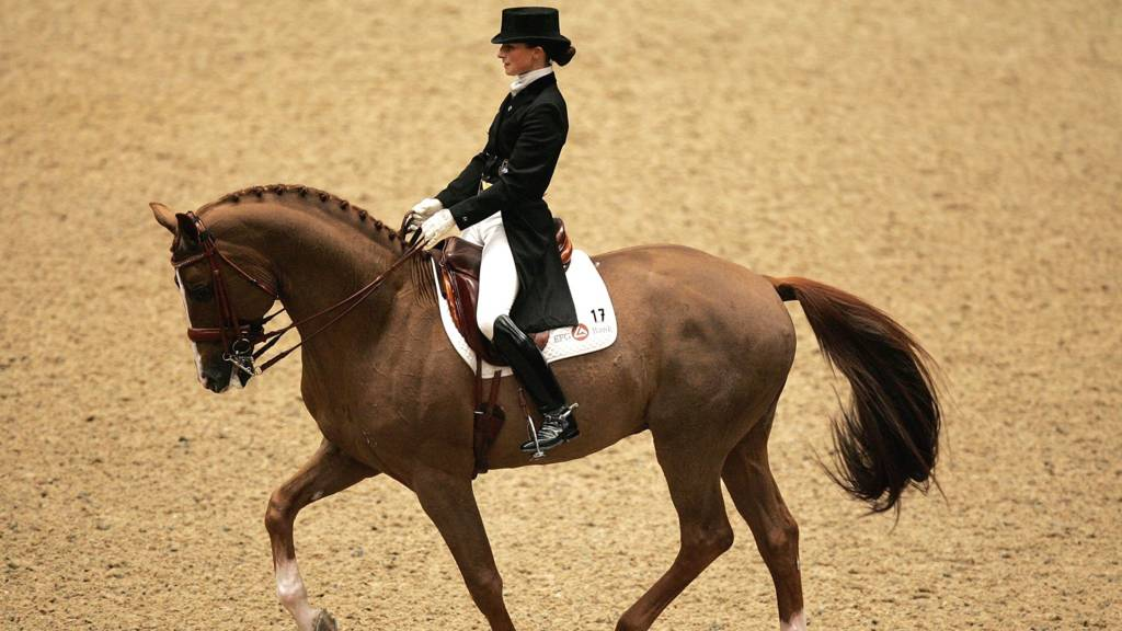Dressage at Olympia