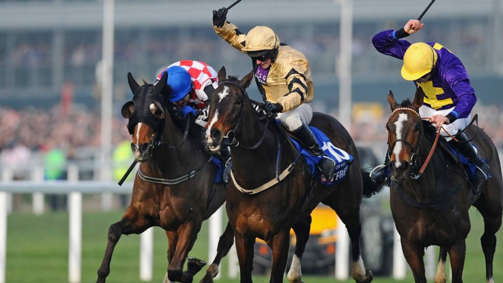 Gold cup race at Cheltenham