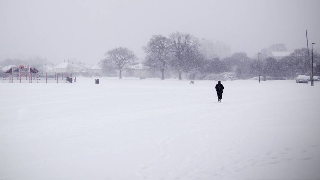 Birmingham: Snow and bare trees at Longbridge