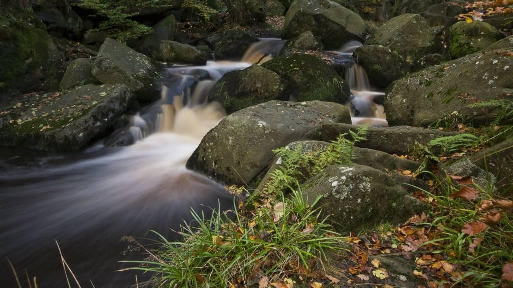 Padley Gorge, Grindleford