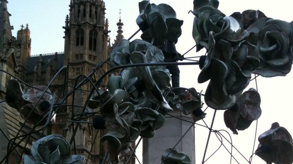 Parliament roses