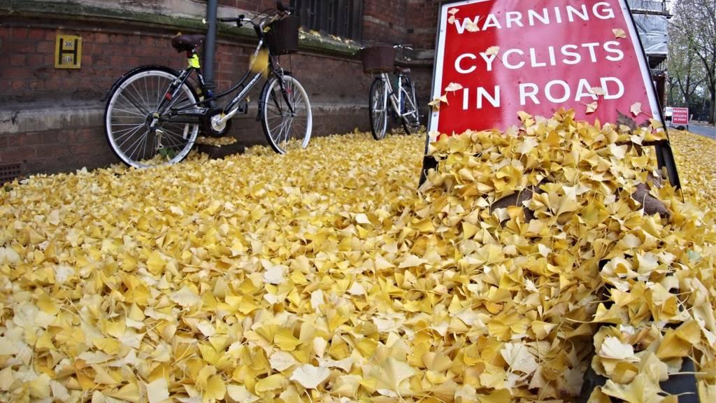 Bike and cycling warning sign