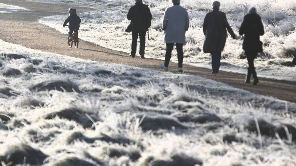 People walking in Richmond Park