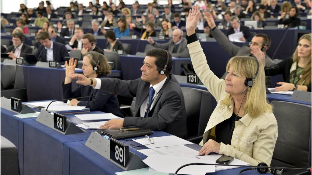 Voting in the European Parliament, Strasbourg