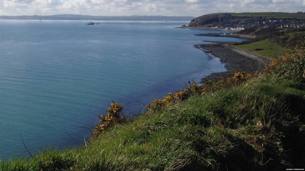 Whitehead bay