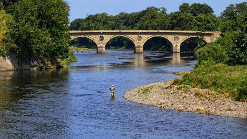 River Tweed near Coldstream