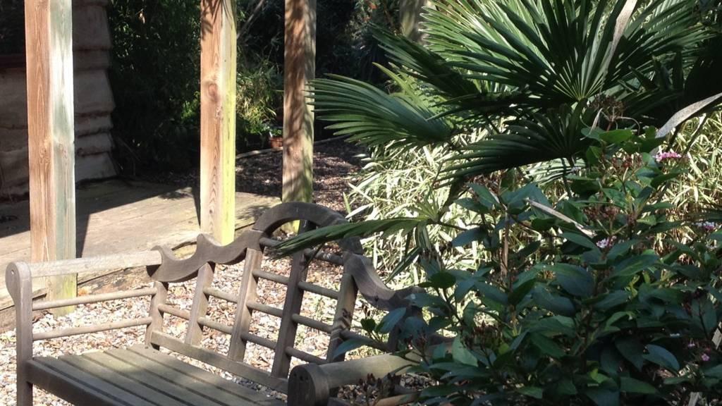 Henstead Exotic Garden nr Beccles