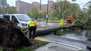 A tree lies on the road after Storm Dorian slammed into Canada's Atlantic coast on Saturday in Halifax, Canada, September 7, 2019