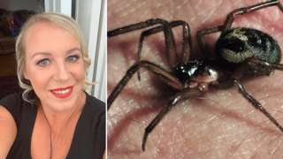 Louise Edwards and a false widow spider