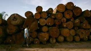 Depósito de toras de madeira em Rondônia