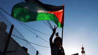 A Palestinian child gestures while holding a Palestinian flag at a protest against Israel in the Gaza Strip (2 July 2020)