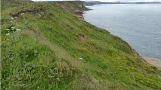 The coast at North Cliff, Filey