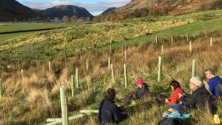Volunteers help plant trees in the River Cocker catchment