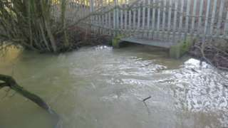 Sewage pouring from Witney treatment works overflow into Colwell Brook