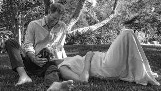 哈里與梅根躺在樹下