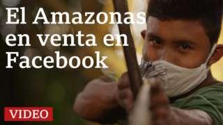 Guardián del Amazonas
