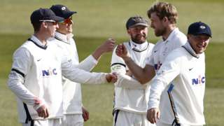 Yorkshire celebrate a wicket for David Willey