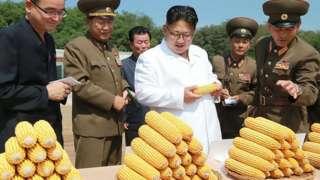 지난 2016년 옥수수 가공공장 시찰에 나선 북한 김정은 위원장