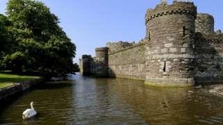 Замок Бомарис, крепостной ров и лебедь.
