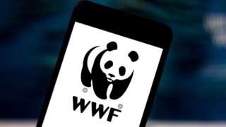 WWF logo on a phone screen