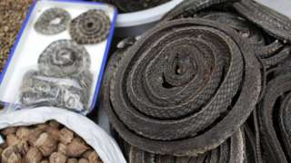 Dried snakes at a traditional Chinese market