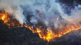 Australian forest fires