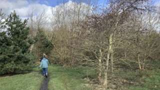 Walking through part of Rotary Wood