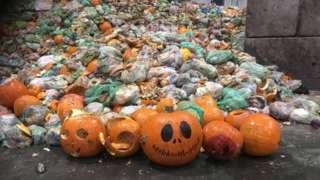 Pumpkins at food waste