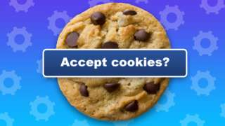 """A chocolate chip cookie biscuit is seen with a banner overlaid, reading """"accept cookies"""" in this illustraton"""