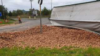 The potatoes over the road