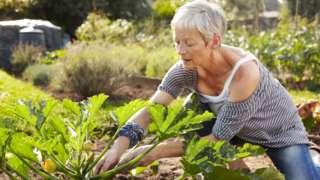 Pensioner gardening