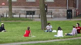 Universitas Harvard, virus corona