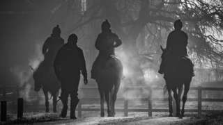 Horse riders on a path