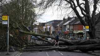 A fallen tree blocking a road in Isleworth, London
