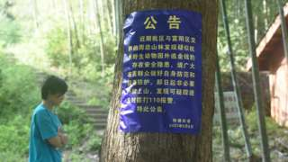 杭州市西湖區何家村發佈了有關出逃金錢豹的提醒公告。