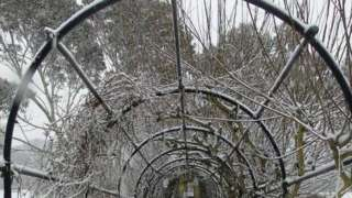 Snow covered park walkway