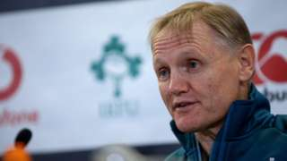 Joe Schmidt has been suggested as a possible successor to New Zealand coach Steve Hansen, when the twice World Cup-winning coach does step down